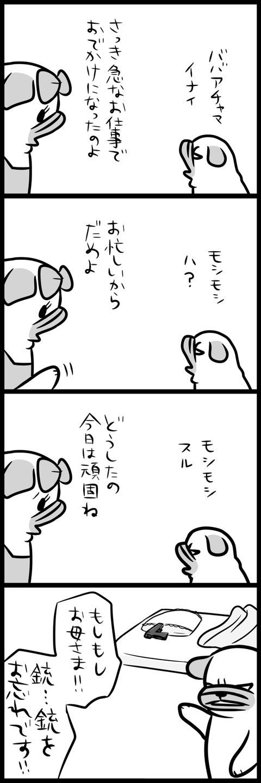 sh081