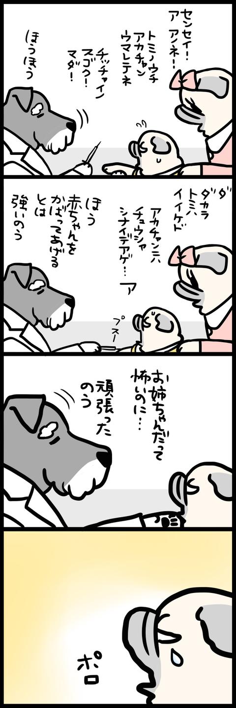 sh668