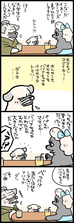 sh443