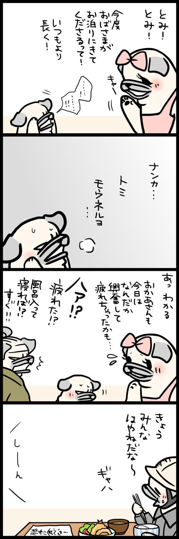 sh429