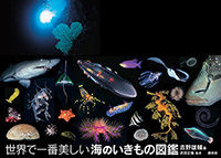 ssss2015-4海のいきもの図鑑_帯あり のコピー