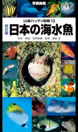 山溪ハンディ図鑑改訂版日本の海水魚 2