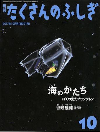 海のかたち 表紙 4