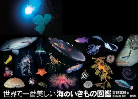 2015-4海のいきもの図鑑_帯あり