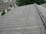 大屋根塗装前