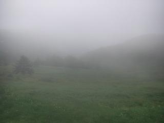 ハーレーのツーリング 美ヶ原
