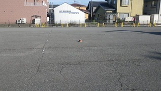 ジャスコの駐車場の正義の味方