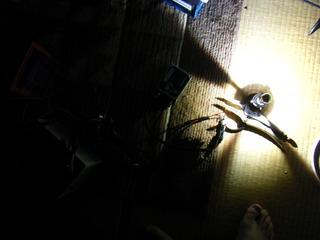 ハーレーのHIDバルブ点灯チェック