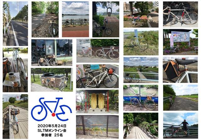 SLTM20200524オンライン会参加者3(25名)