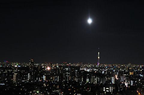 文京シビックセンターからの夜景(その6)