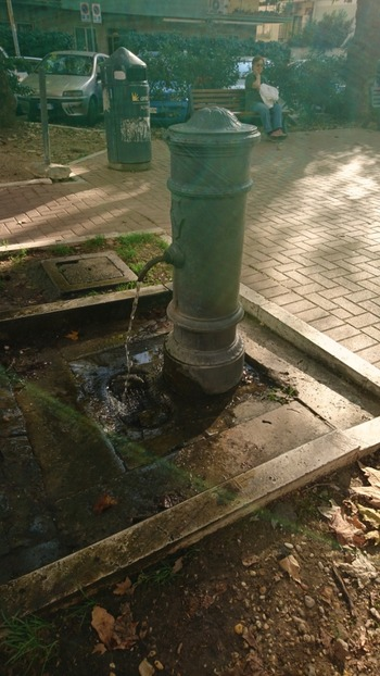 公園の水道栓