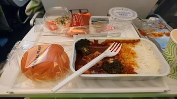 機内食1チキンカレー