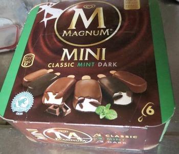 ミントアイスとチョコアイス