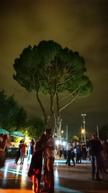 夜のミロンガ