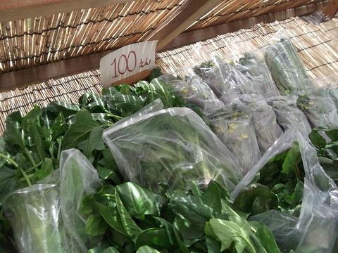シュウ 野菜写真