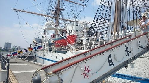 横浜開港祭 2代目「帆船日本丸」 一般公開 新港埠頭