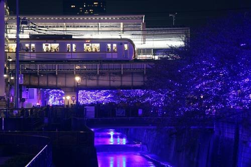 Nakameguro 青の洞窟 2014 中目黒駅
