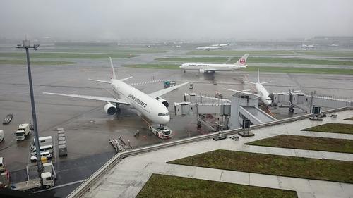 スマホ画像 JAL FLY to 2020 特別塗装機