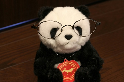 眼鏡パンダ