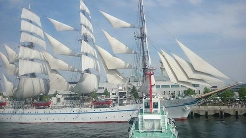 横浜開港祭 2代目「帆船日本丸」 セイルドリル 新港埠頭