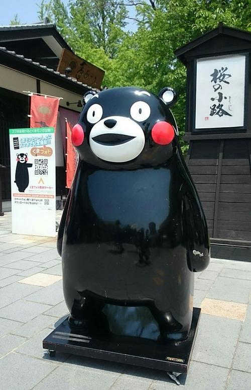 くまモン 熊本城 桜の小路