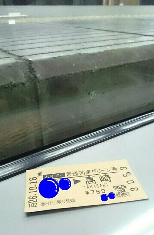 ホリデー普通列車グリーン券