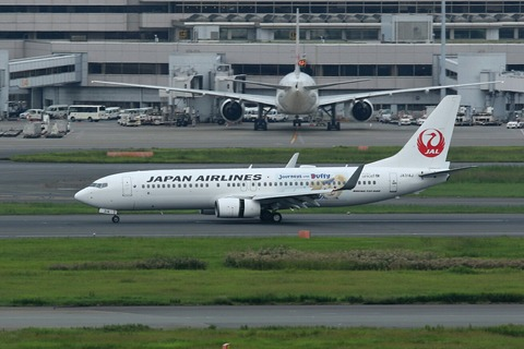JA314J B737-800 JAL Journeys with Duffy RJTT