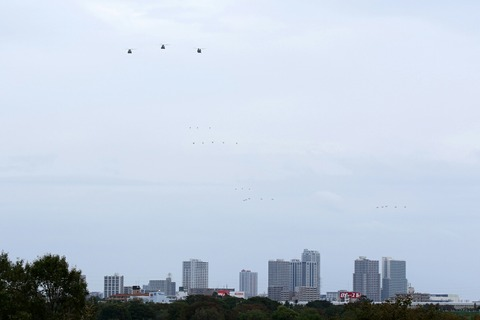 陸上自衛隊 ヘリコプター 自衛隊記念日観閲式 観閲飛行 荒川土手