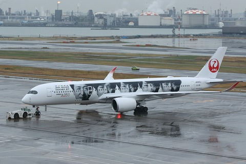 JA04XJ A350-900 JAL 20th ARASHI THANKS JET RJTT
