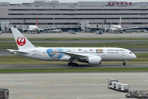 JA828J B787-8 JAL RJTT ジブリ特別塗装機