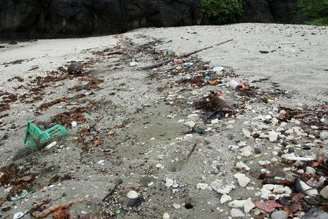 ケータ島エコツアー 海岸