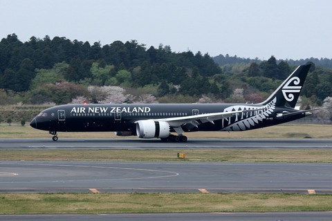ZK-NZE B787-9 ANZ All Blacks RJAA