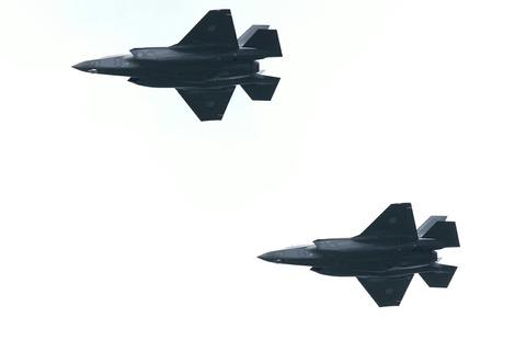 F-35 自衛隊記念日観閲式 観閲飛行 彩湖・道満グリーンパーク