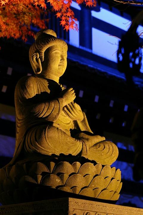 紅葉 ライトアップ 鎌倉 長谷寺