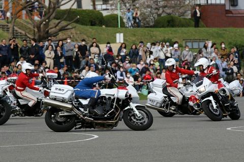 クイーンスターズ ドリル走行 第41回警視庁白バイ安全運転競技大会