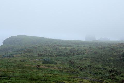 ケータ島エコツアー 頂上