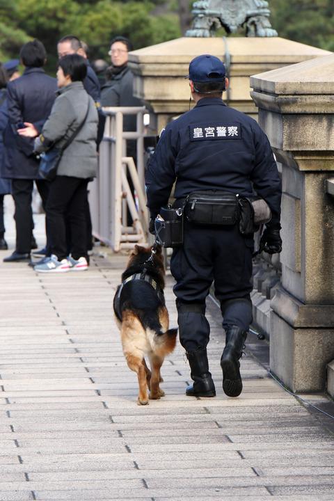 皇居 新年一般参賀 皇宮警察 警備犬