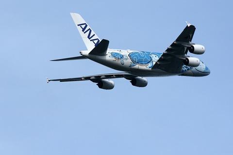 JA381A A380-800 ANA FLYING HONU RJAA