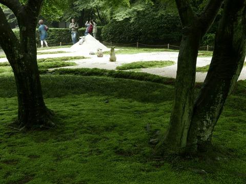 本堂後庭園 鎌倉 明月院