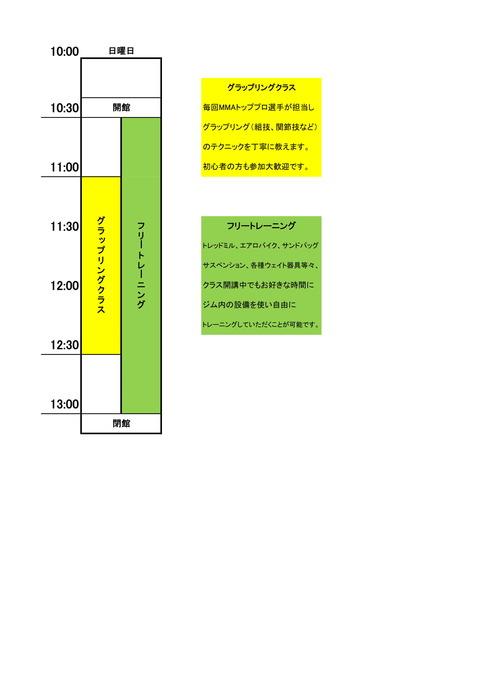 パンクラスイズム横浜日タイムスケジュール-1