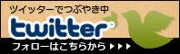 bn_twitter-3