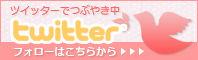 bn_twitter-2