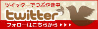 bn_twitter-4