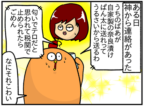 奈良漬け3