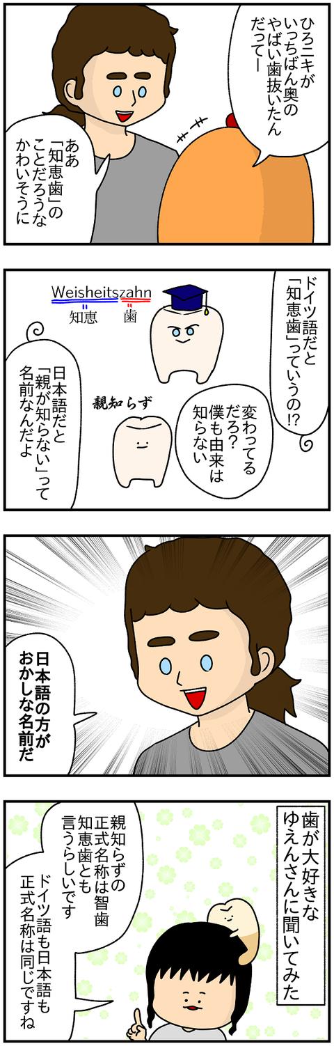 565.歯2