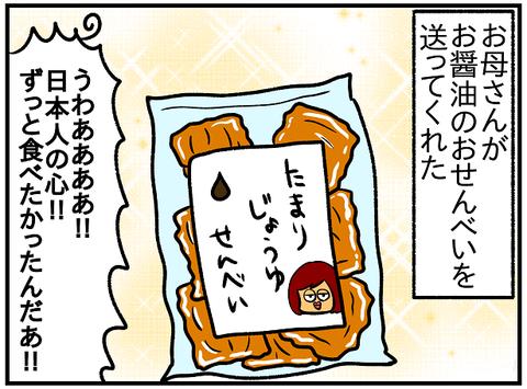 お醤油クッキー3