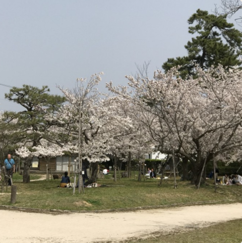 写真 2018-04-20 18 22 44