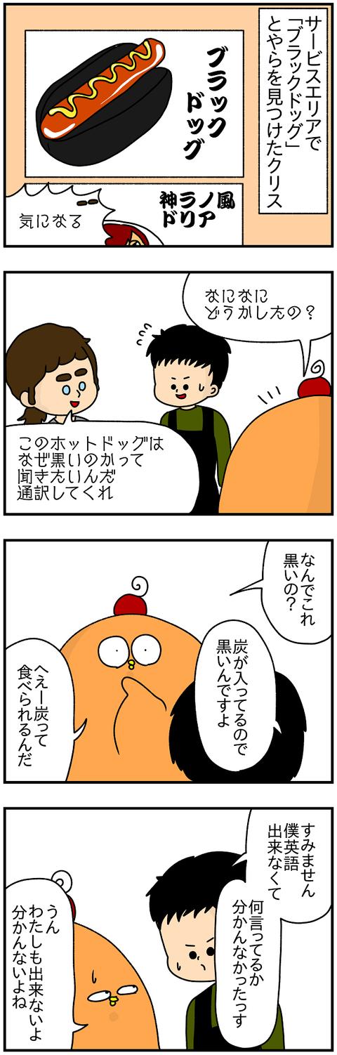 736.日本レポ511