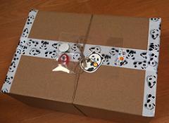 100515_panda box