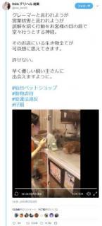 仙台のペットショップ、仔猫をわしづかみ虐待 客が動画撮影し告発